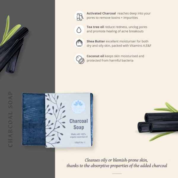 Charcoal soap infograph