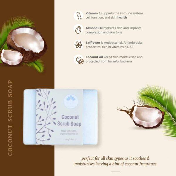 Coconut scrub soap infograph