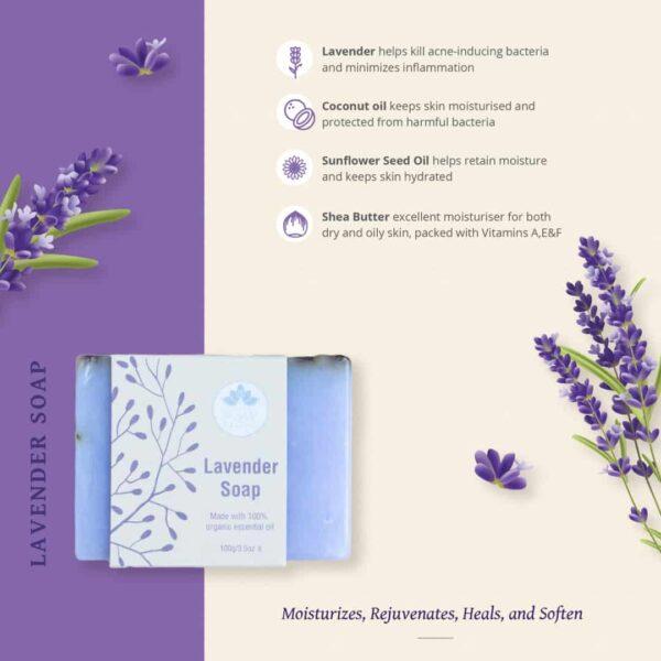 Lavender soap infograph